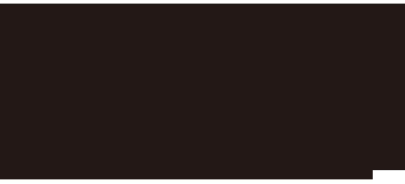 洋型模様のデザイン例