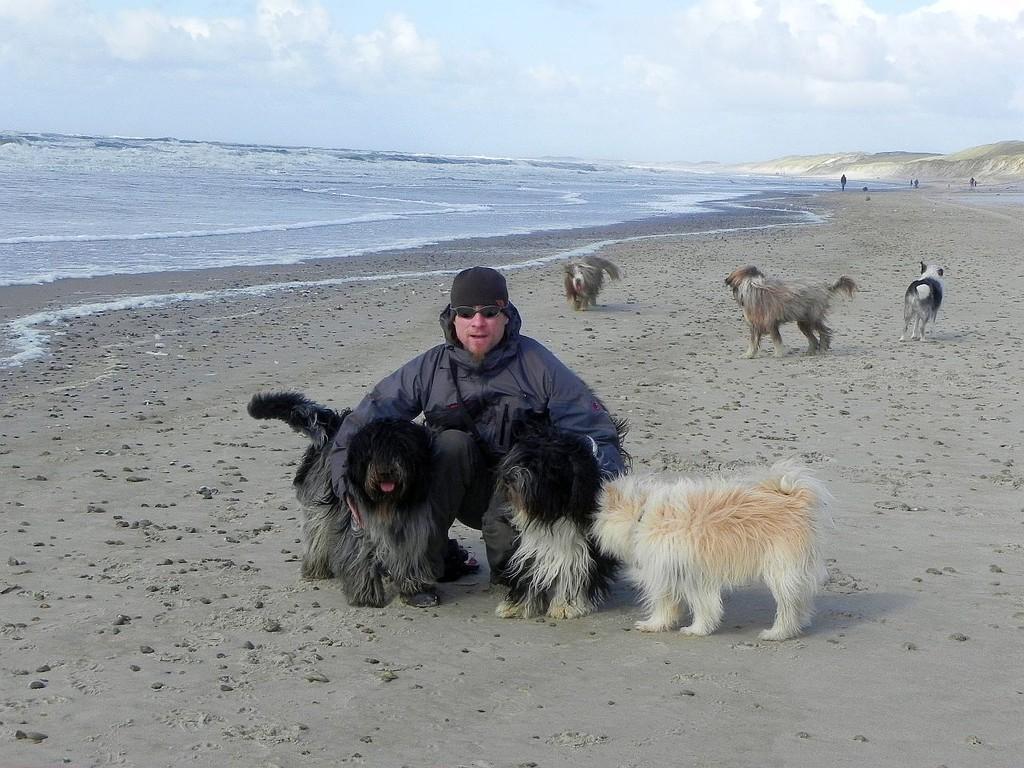 einen Arm voll Hund....