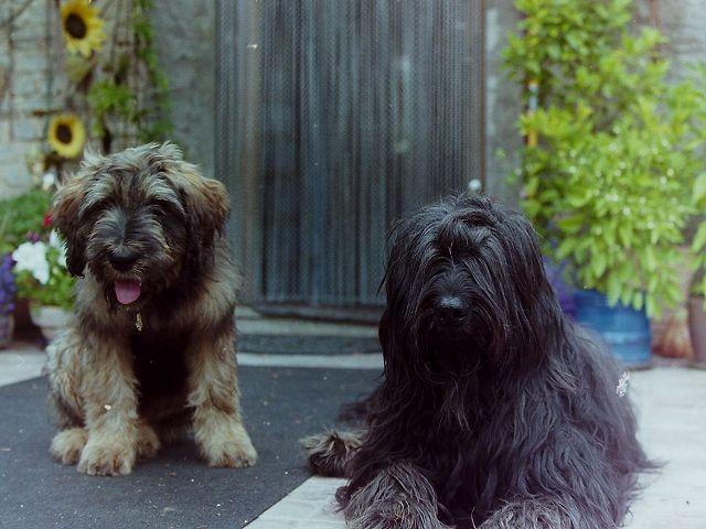 Ella&Colette