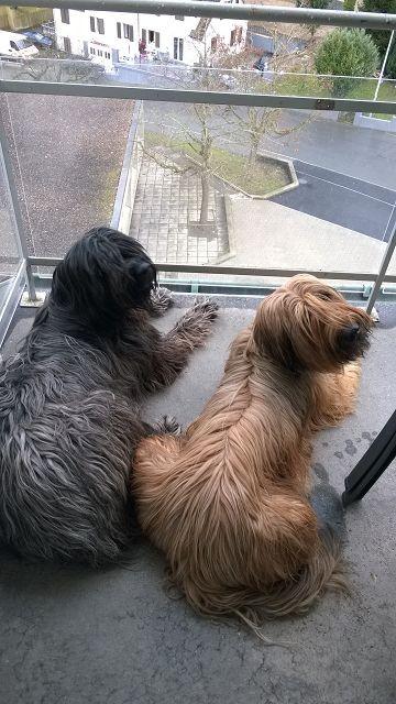 Flo und Besuch Mia