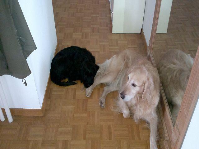 Flo und Sally