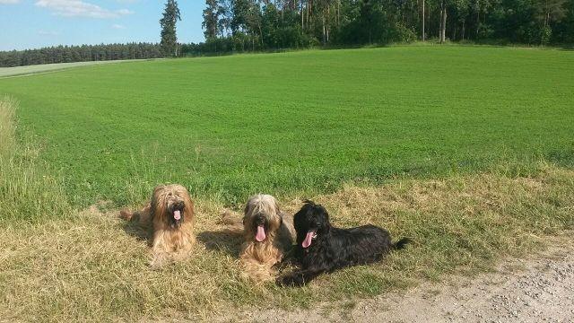 Babette, Alain & Emee