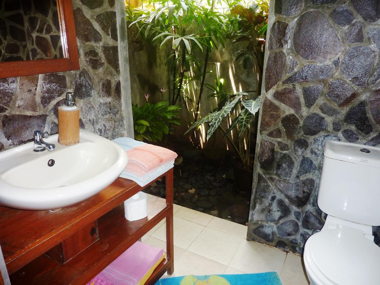 Bathroom with an inner garden