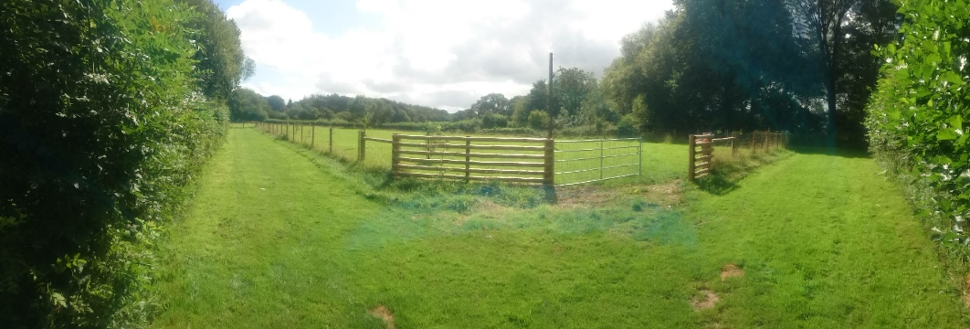 Big Paddock (2 1/2 acres)