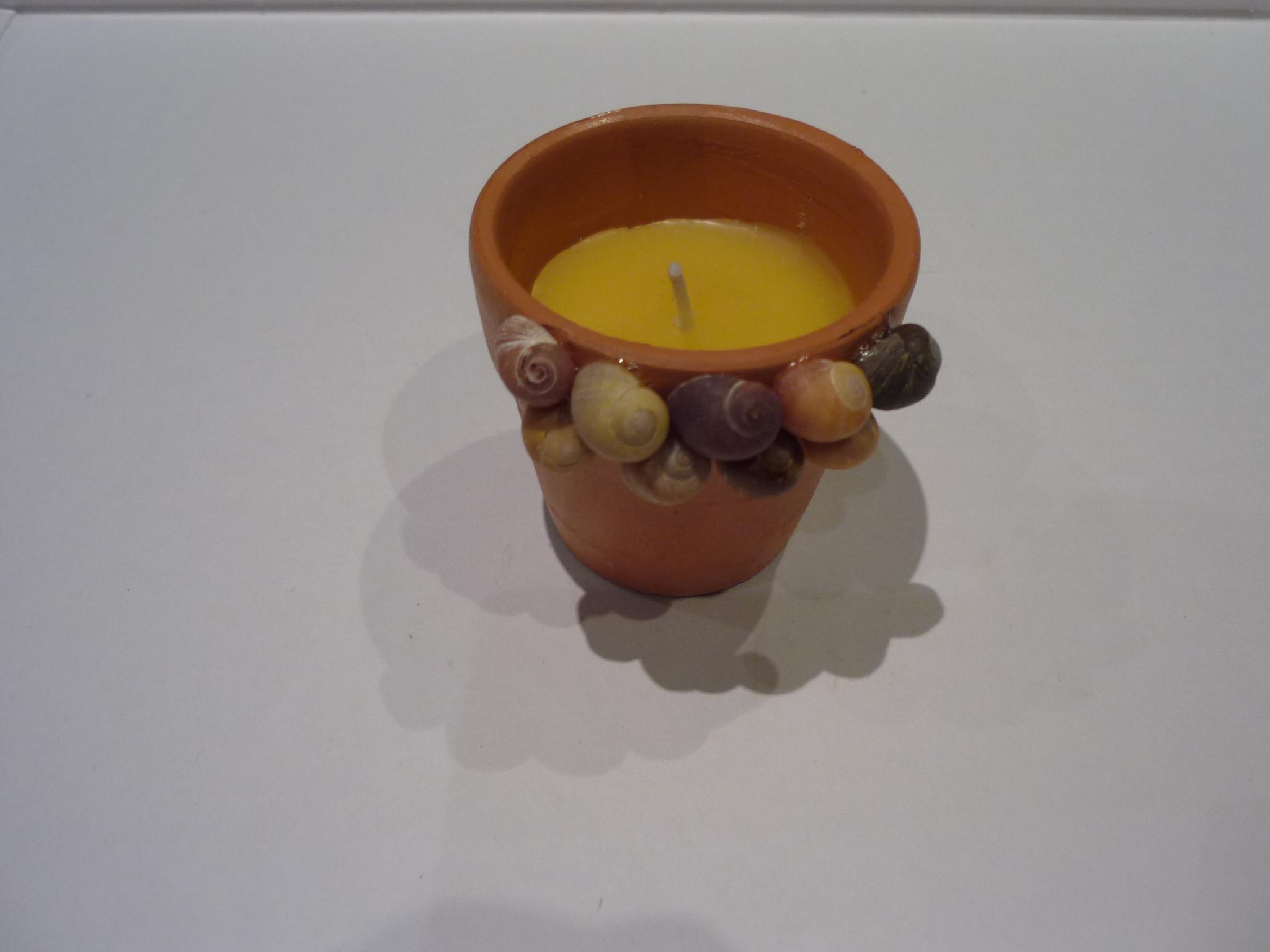 n°317 bougie citronnelle & littorines (vendu)