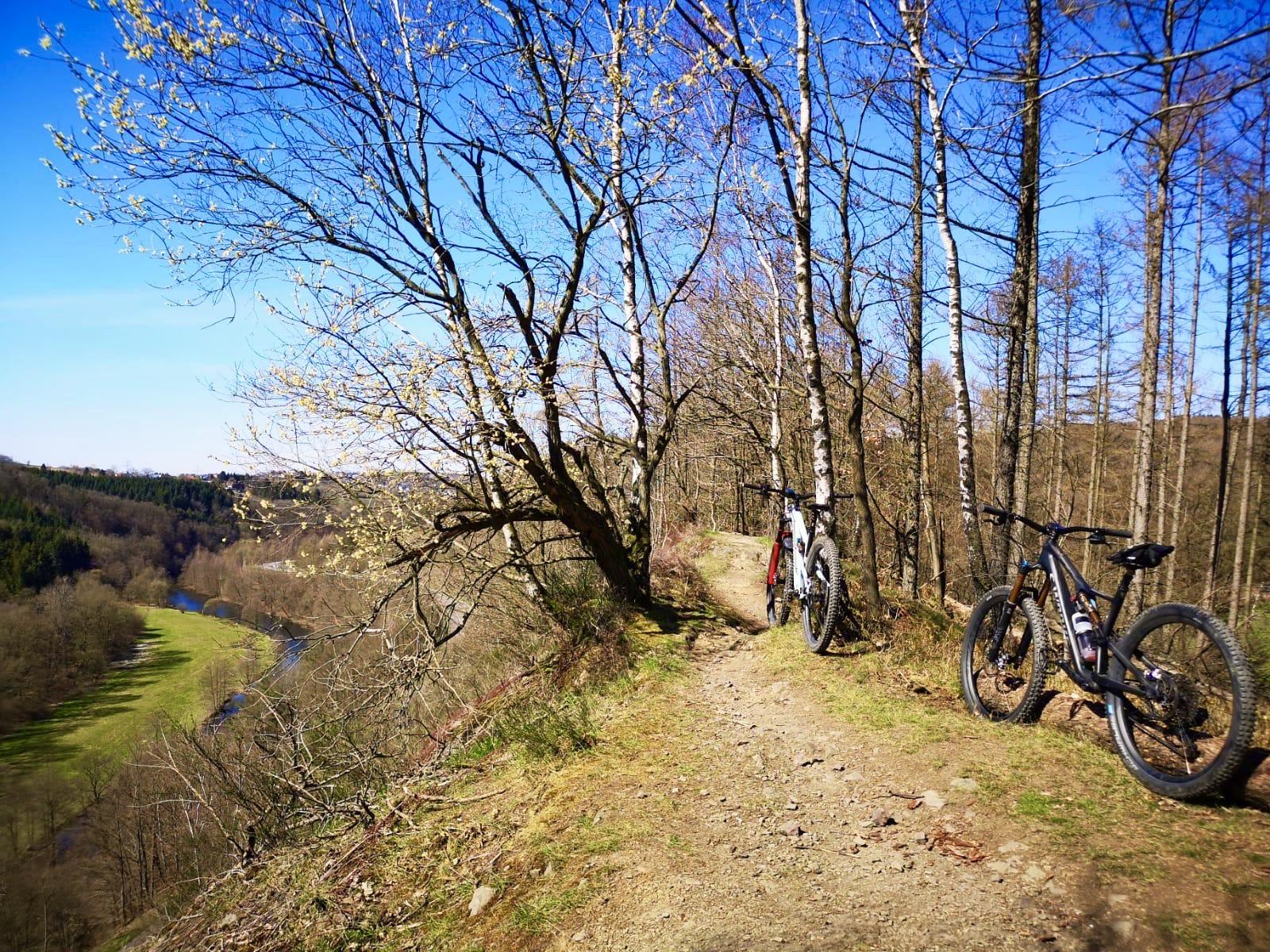 Blaubeer Trail