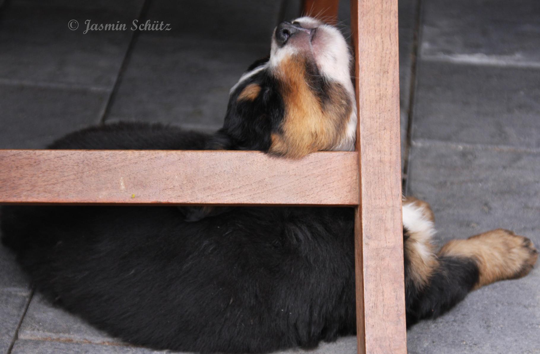 ich bin ja soooo müde;0))
