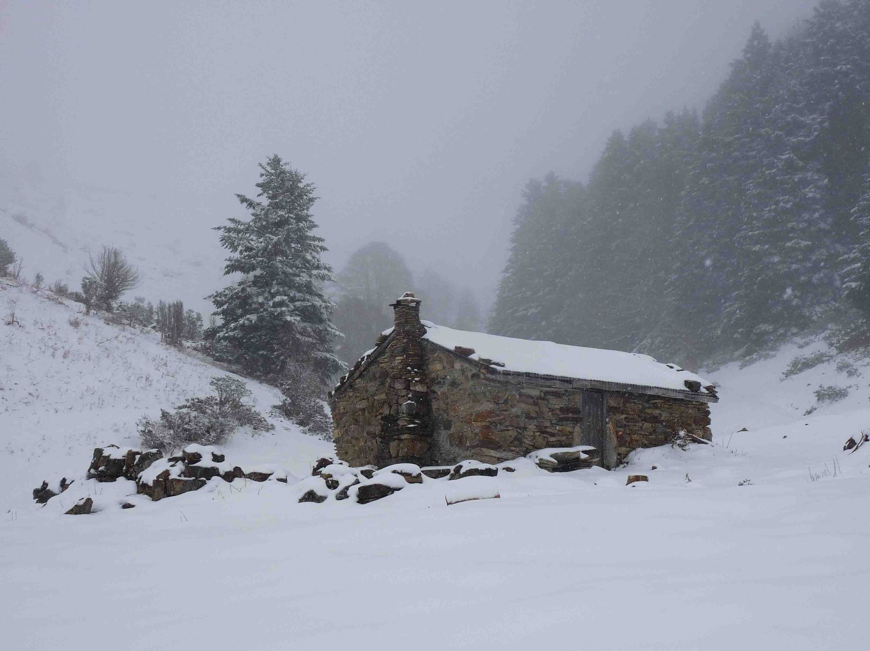 Un joli cadre montagnard, l'abri du berger à la Hosse