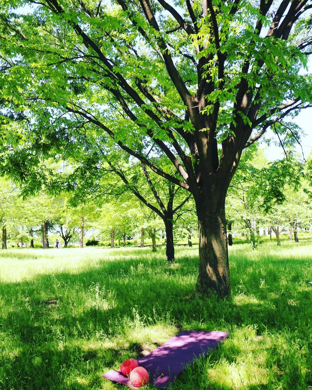 2016.05 新緑のなかでピラティスクラス開催!
