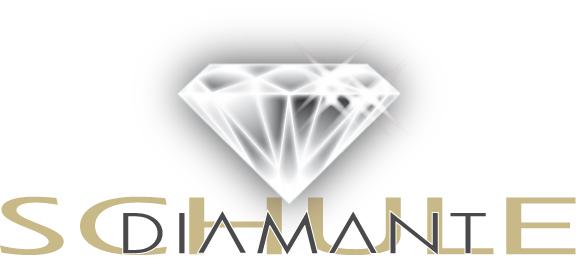 Markenentwicklung, Logo für Diamantschule © Susanne Barth, The Creative Associates