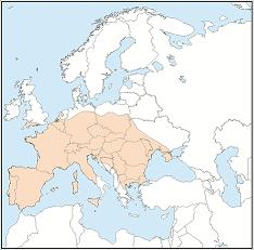 Bildmaterial: 2021 UNEP/EUROBATS