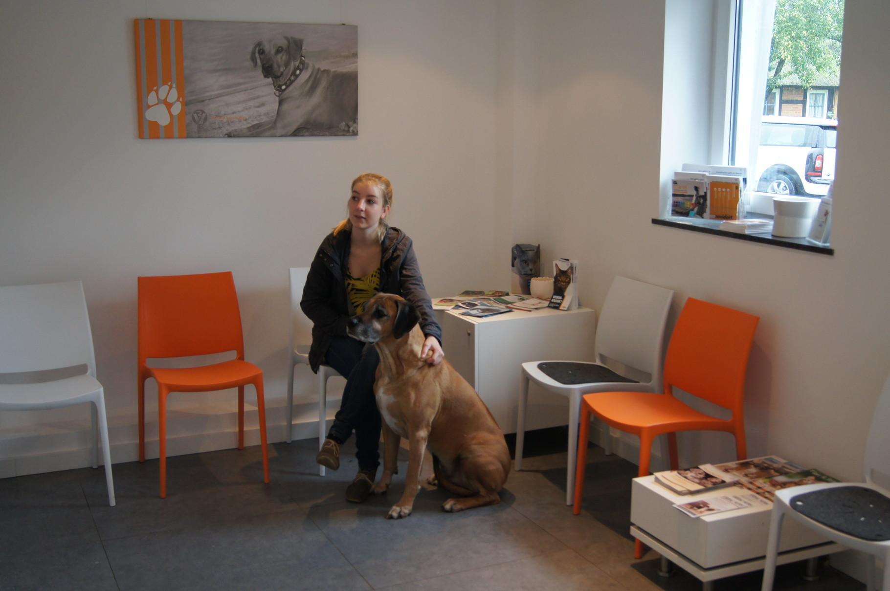 Tierarztpraxis Isernhagen - Wartezimmer