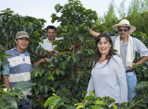 Familie Builes Kaffeeanbau Kolumbien