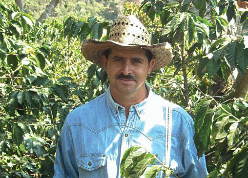 Kaffeebauer aus Guatemala