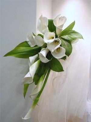 花束 カラーライン