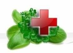 Защита растений. Аптекарский огородик - в Ваш Сад