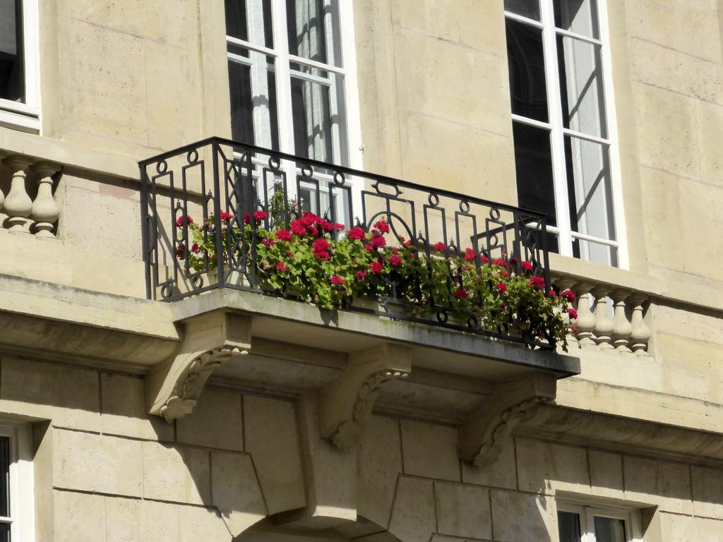 Rue de l'Odéon: Der Blick nach oben lohnt sich, selbst wenn man dabei riskiert, in einen Hundekot zu treten