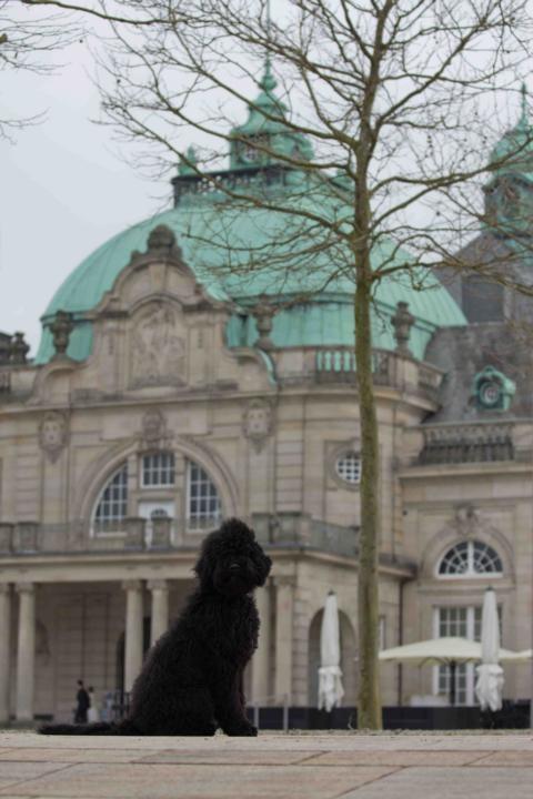 Wenn die Kulisse des Kurhauses in Bad Oeynhausen für Hochzeiten genutzt wird, dann ist das für ich bestimmt auch o.k.