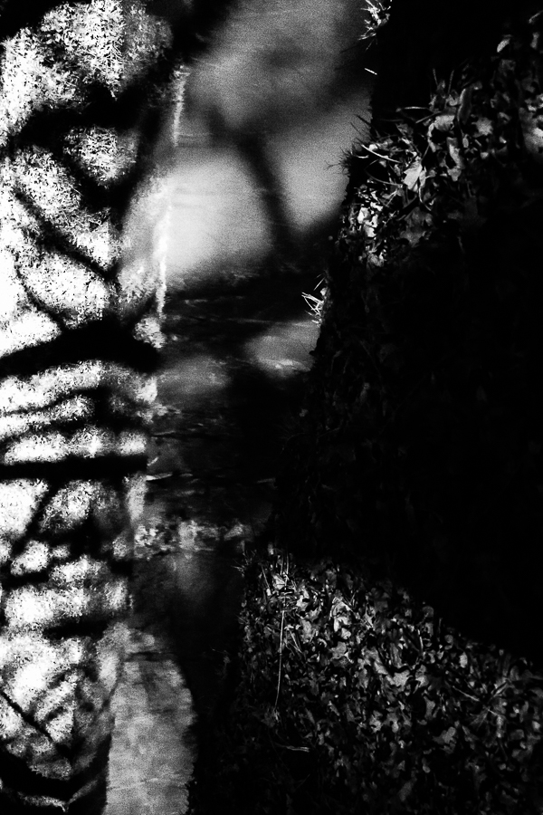 Michael Bennoun - le canal - the canal