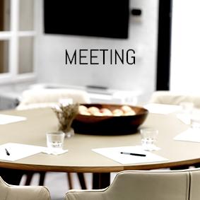 meeting-blaue-gans