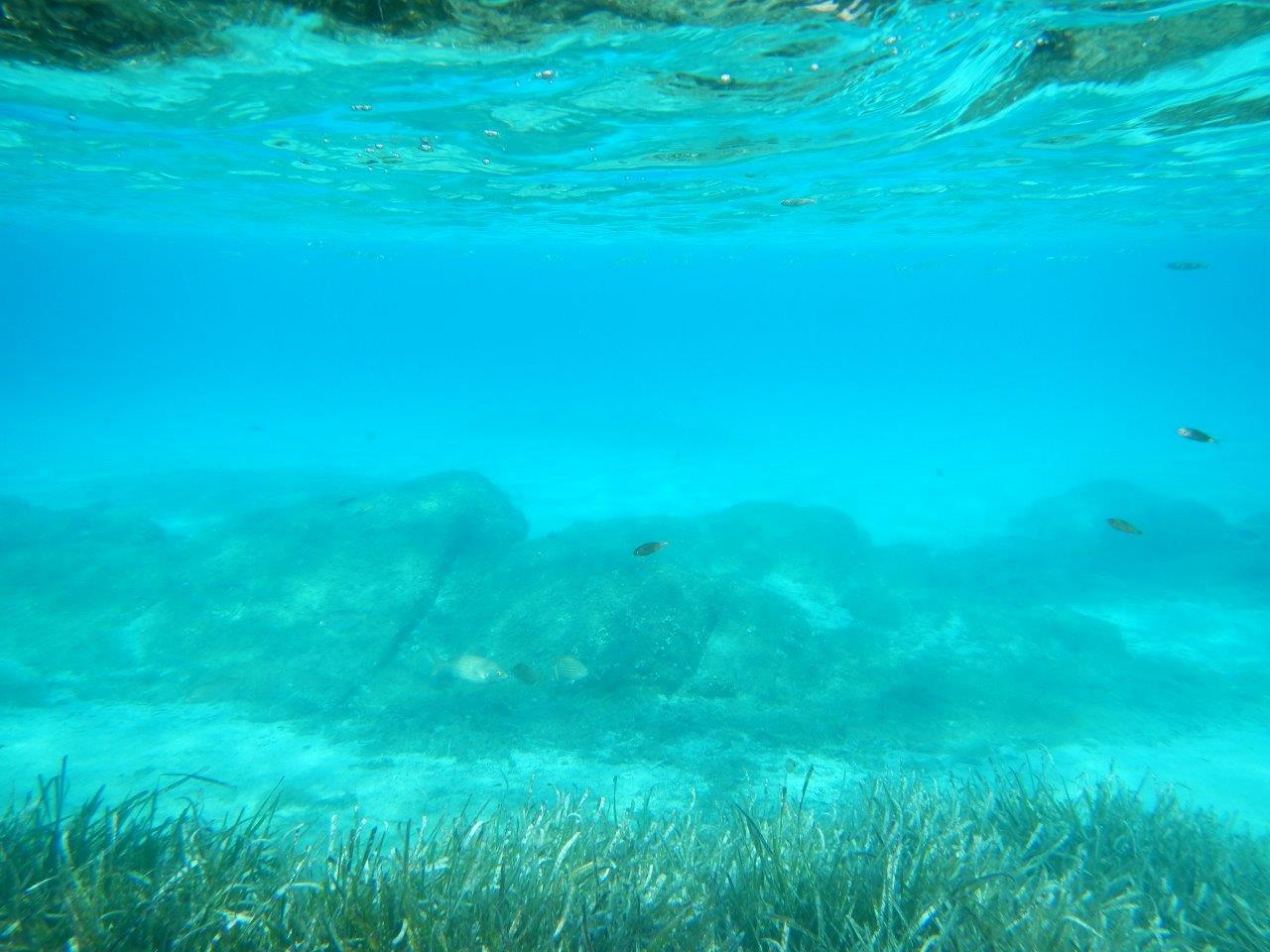 auch unter Wasser sieht man scheiß Türkis