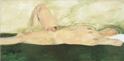 """Eva Hradil, """"11.8.2005"""" aus """"Männerlandschaften"""", 100 x 200 cm, Pigmente und Acrylbinder auf Leinwand"""