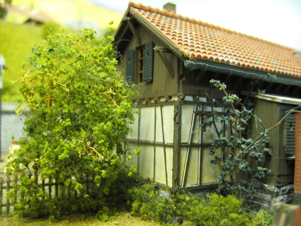 Die Natur am Güterschuppen in Blumenfeld (aus zwei der bekannten Faller-Bausätze entstanden)