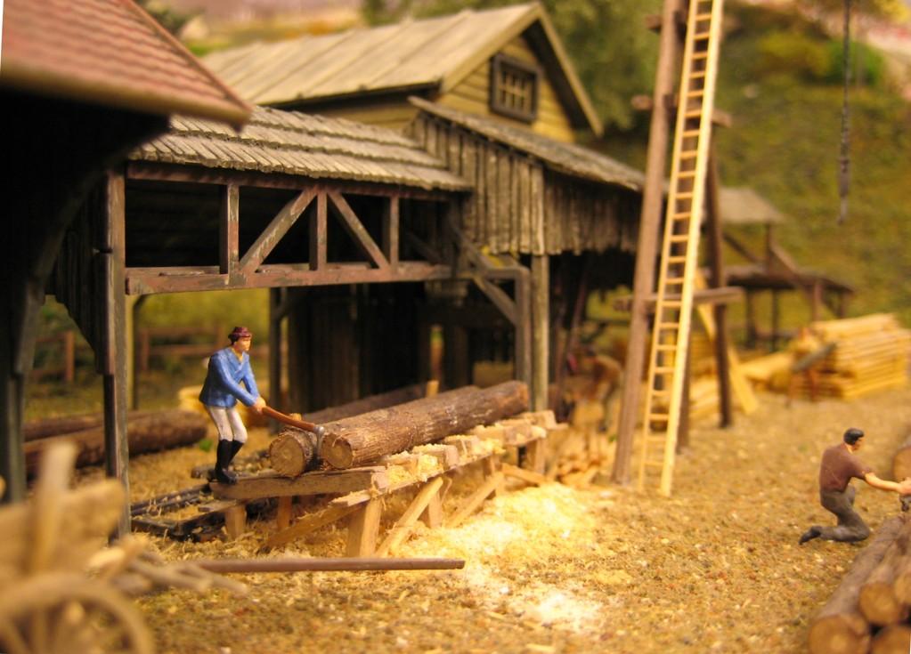 Im Sägewerk werden die Stämme aus dem Schwarzwald zu Brettern verarbeitet.
