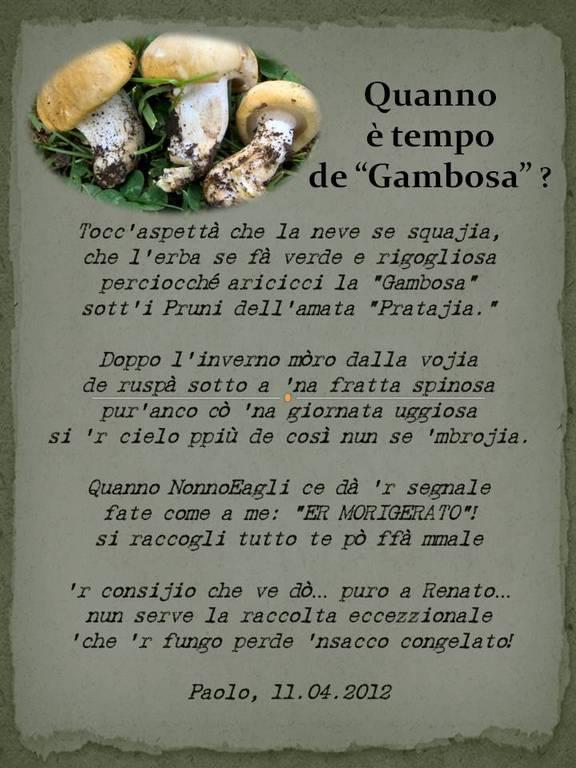 sonetto dedicato a Renato