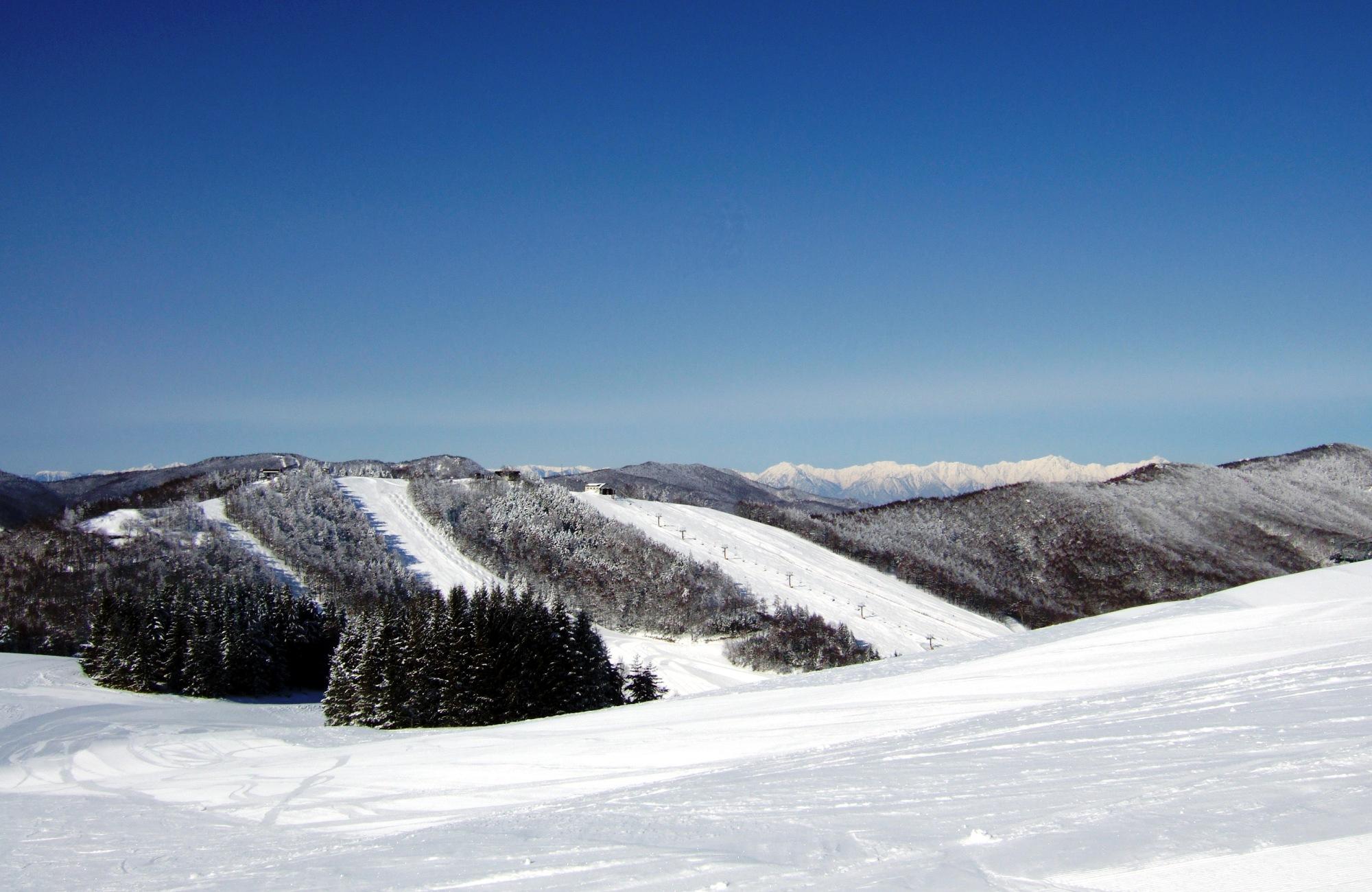裏ダボスから見た太郎エリアと後立山連峰