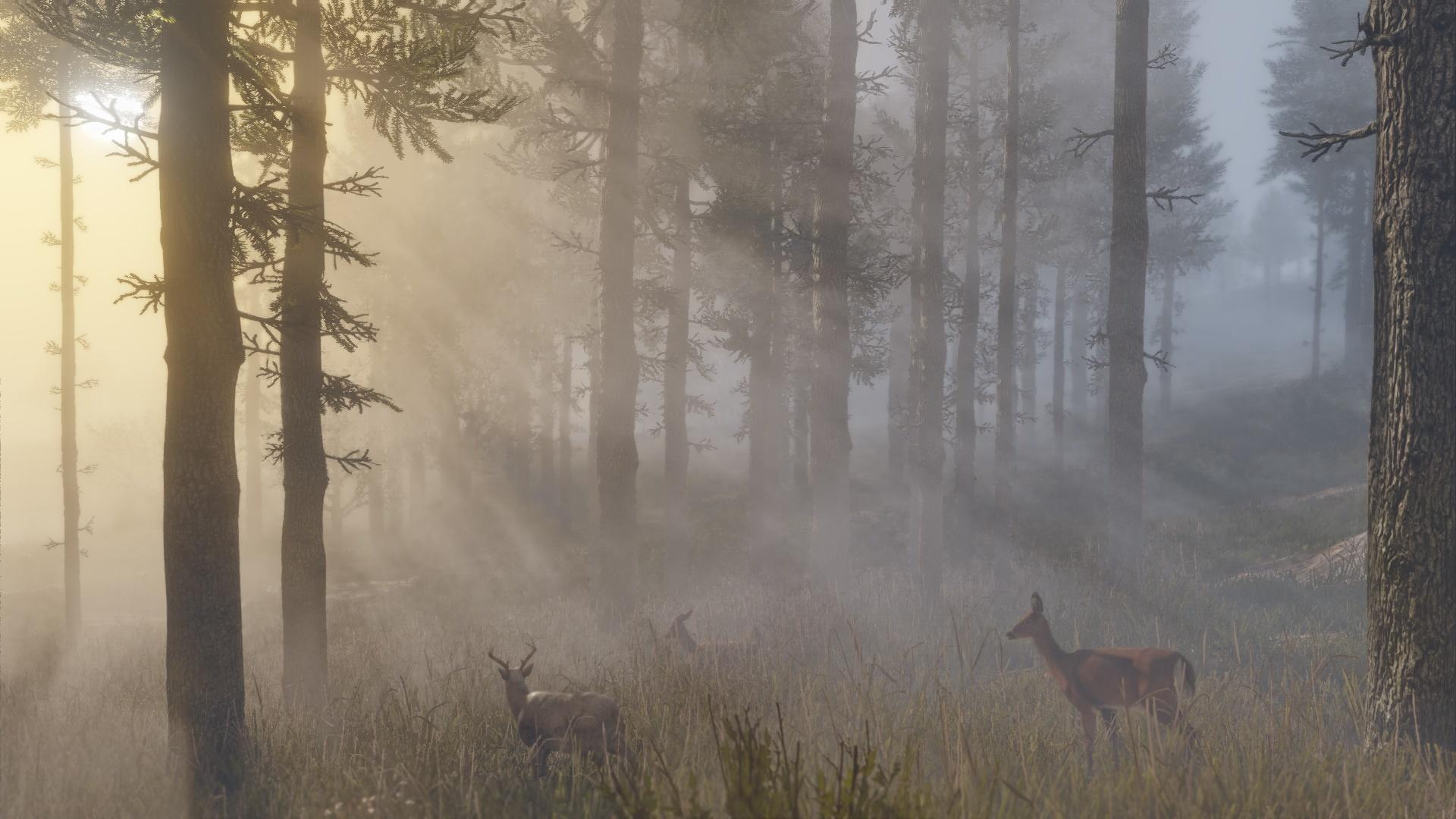 Neue Screenshots zu Red Dead Redemption 2 zeigen Tierwelt, Open World und Charaktere. Bild 18 - Quelle: Rockstar Games
