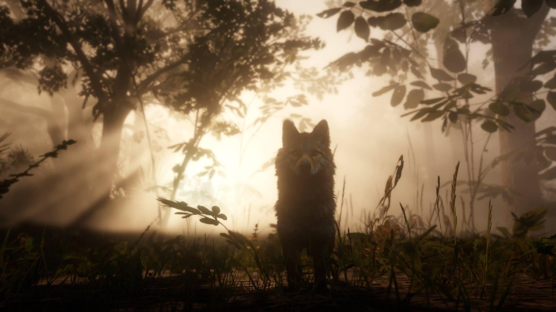 Neue Screenshots zu Red Dead Redemption 2 zeigen Tierwelt, Open World und Charaktere. Bild 6 - Quelle: Rockstar Games
