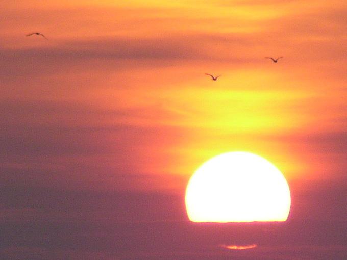馬堀海岸3丁目の護岸からの日の出