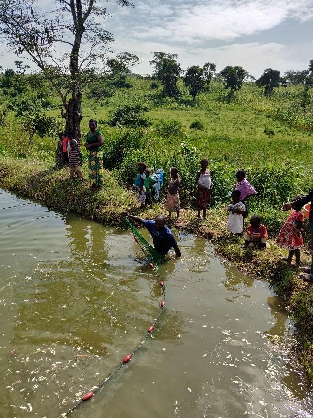 """Am 25.11.2018 besuchten die Mitglieder von Ostafrika-Hilfe e.V. auch die """"Akili Ndiyo Mali/VSLA and Fish Farmers Group"""" in Rwamwanja."""