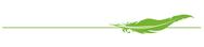 Bestattungen Mauch Logo