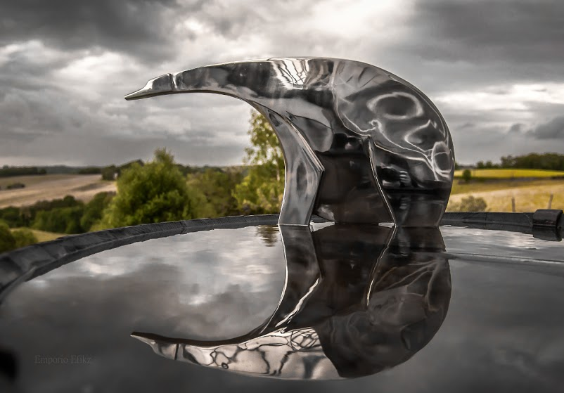 Sculpture inox poli 69cm de long et 36 cm au garrot   5Kg            Photo par Emporio Efikz photography