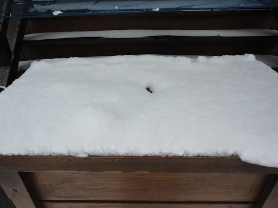 2.  お賽銭箱の投入口。冬期間もお参りの足跡が…。