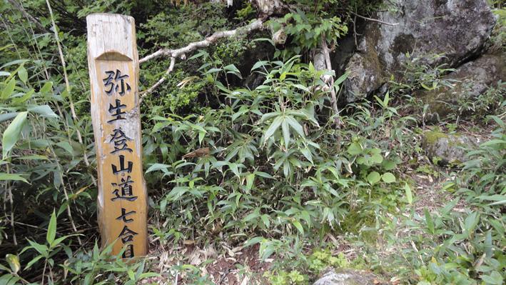 赤い粘度質の登山道はヤブに隠れ滑りやすい