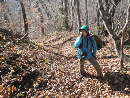 8. 「石の塔」へ向かう縦走路・林道鞍部で唯一、山友に遭遇