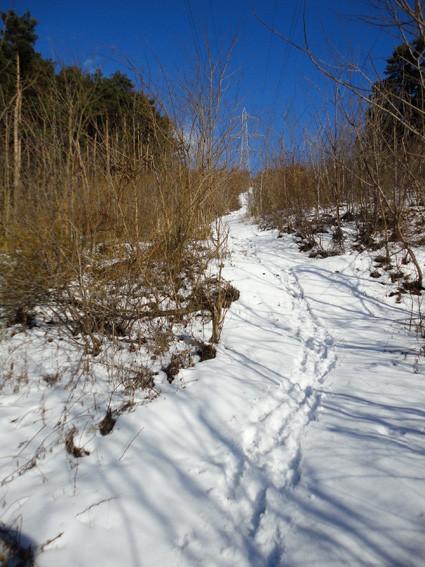 18.   分岐から下山道と並行している高塔下の整備道