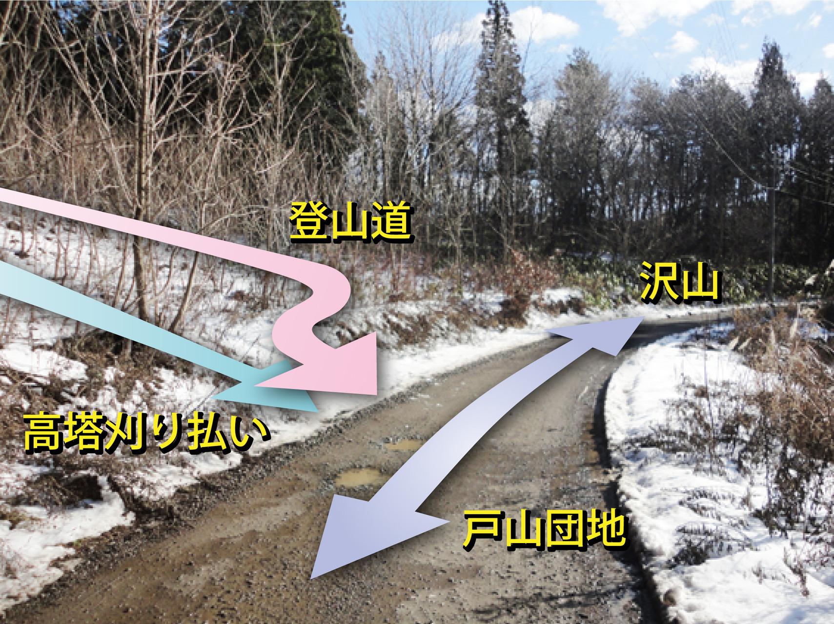 17.   戸山団地←→沢山地区分岐へ出た
