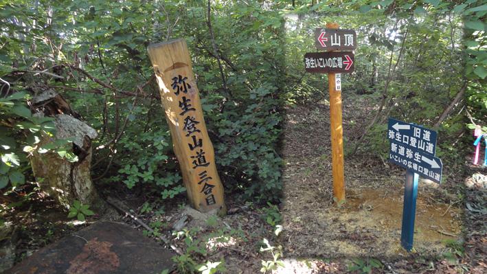 「三合目」新道と弥生登山道の分岐
