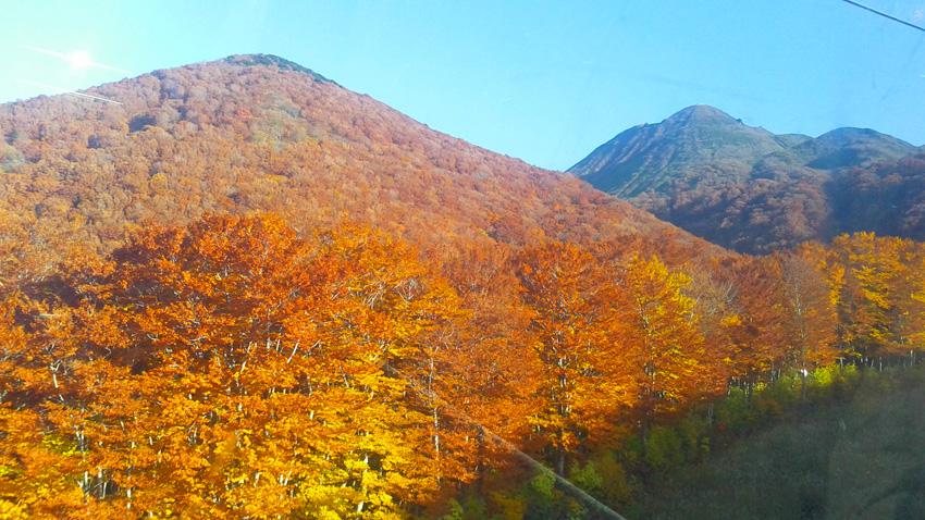 14.  「楽チン楽チン!!」で、ゴンドラから山頂方面を振り返る