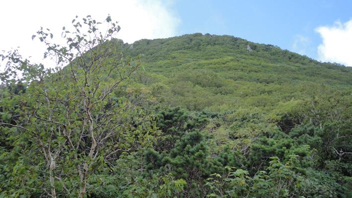 「七合目」を半分ほど進み「巌鬼山」鞍部から山頂臨める