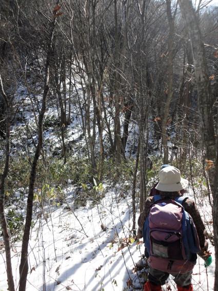 9.   「砥取山」から尾根伝いに1,000mで急斜面に