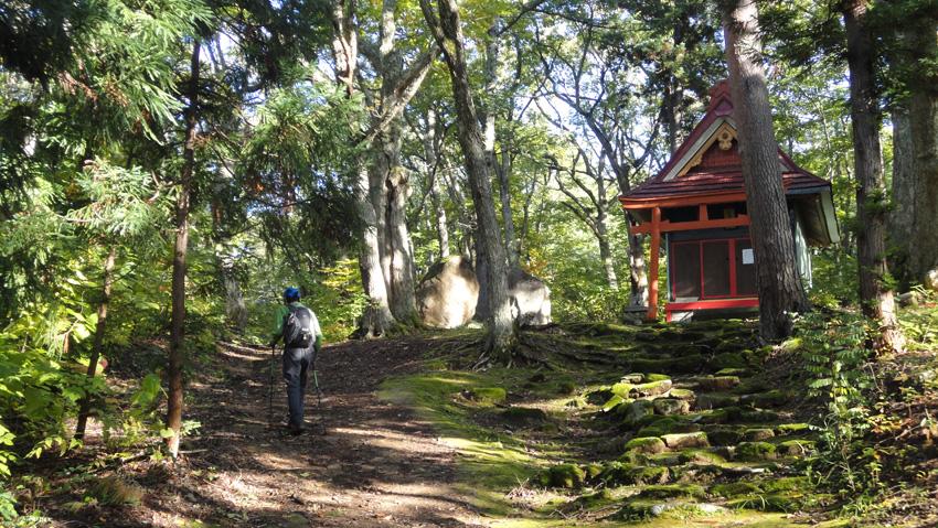 神社お社の左に登山道