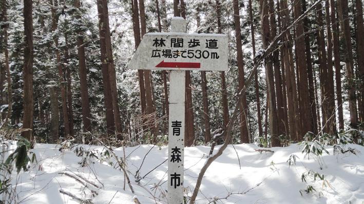 5.  103Pから積雪少ない急な階段降り「林間歩道」入口標識。