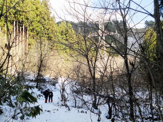 19.   麓の林道から高塔を振り返る