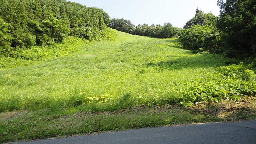 17.  春季に尻滑りした「雨池国際コース」を下り駐車した連絡道路に下山