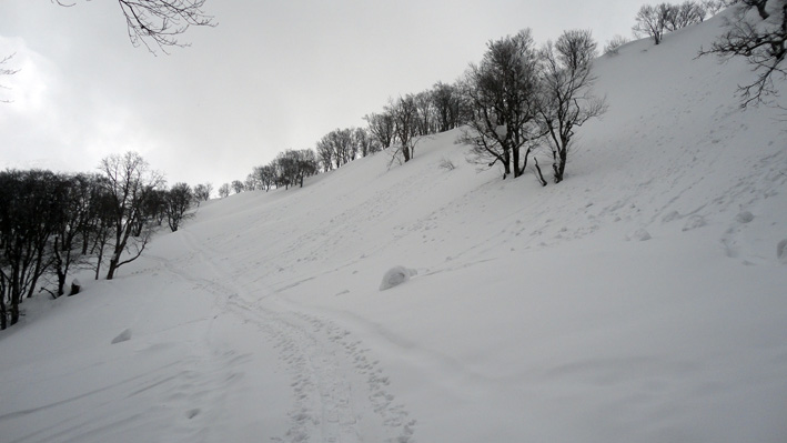 2.  今季は強風少なく山頂駅上「60番」の雪庇なく「俵雪」が見られる